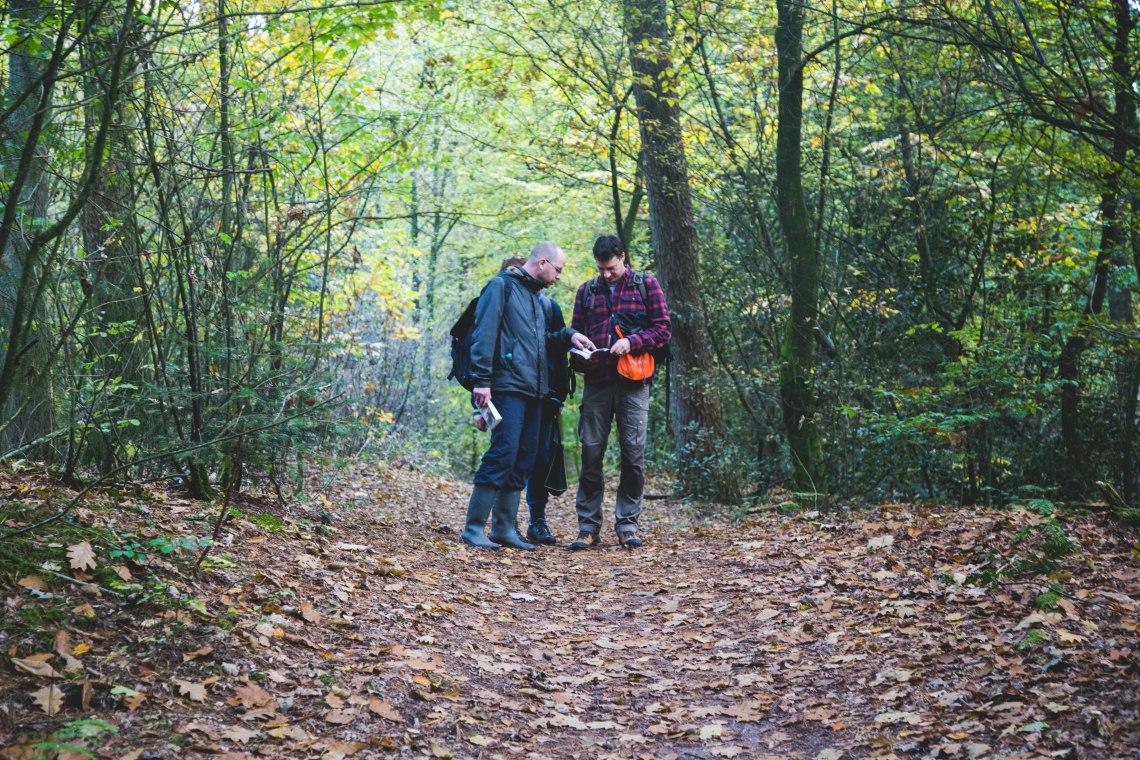 groene-avonturen-eetbare-paddenstoelen-wildpluk-28